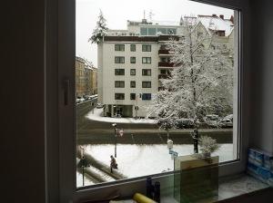 Lindenstrasse & Roonstrasse 2009.01.05 (16)
