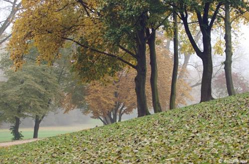 Autumn at the Hiroshima-Nagasaki-Park in Cologne.  Monday 1. November 2010
